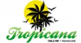 Tropicana 106